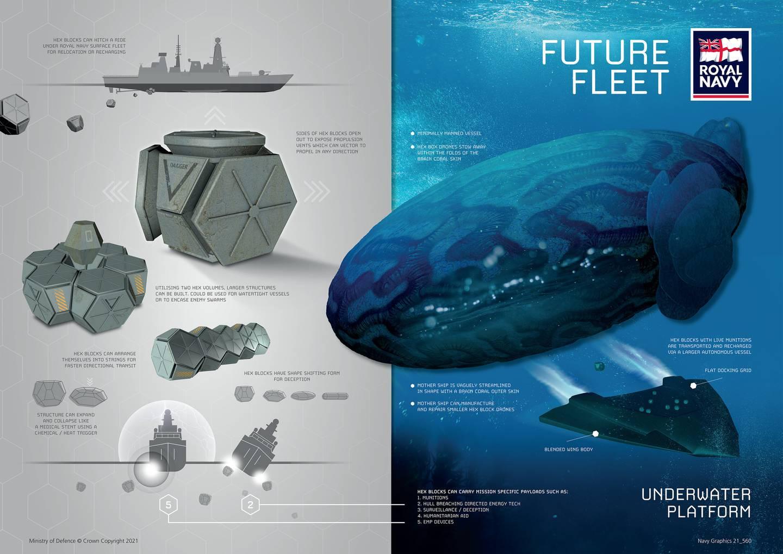 Underwater Platform