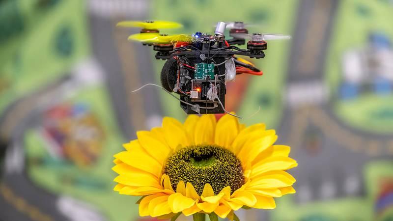 Una de las abejas mecánicas de la Universidad de Maryland