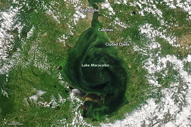 El lago Maracaibo es uno de los lagos más grandes de América del Sur y uno de los más antiguos del mundo.
